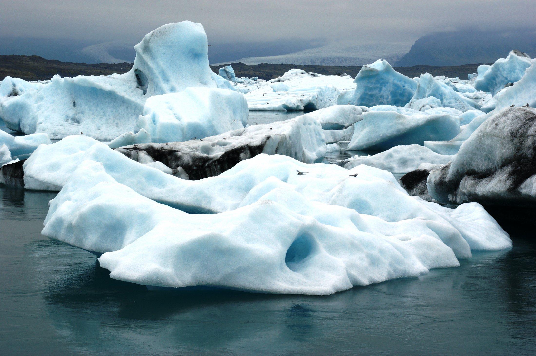IVKirsten Boriesosdiek: Eisberge in der Gletscherlagune