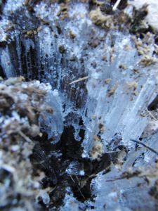 Marie Heidenreich: Eisfäden