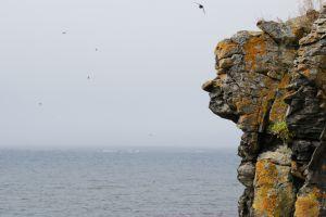 Kirsten Boriesosdiek: Felsengesicht im Land der Elfen und Trolle